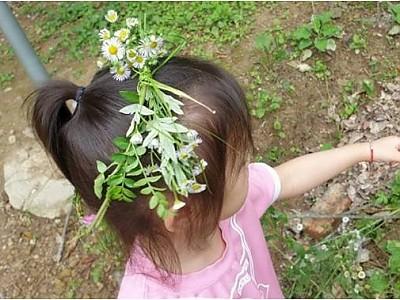 들꽃화환만들기